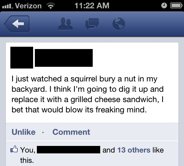 facebook blowing a squirrel's mind by changing its nut with a grilled cheese sandwich