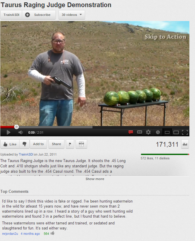 YouTube comment on a watermelon shooting video