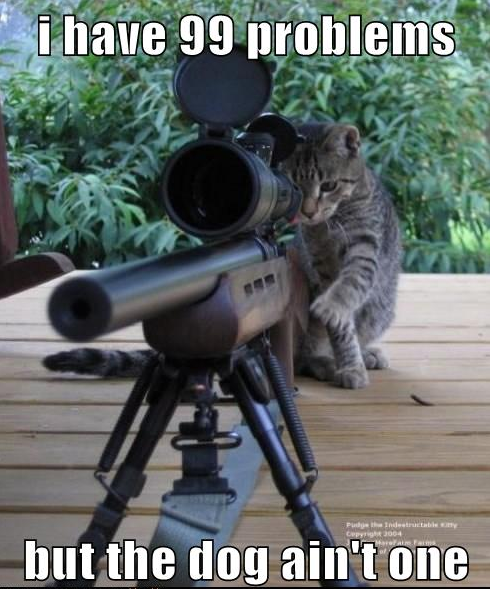 A cat mans a sniper rifle and aims it at the dog. The cat has 99 problems but the dog aint one.